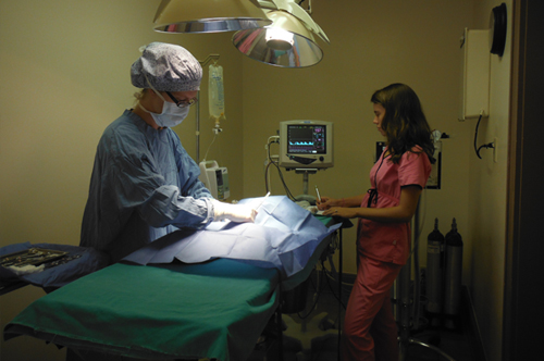 Dr. Georgeou performing surgery while the assistant monitors the patient.